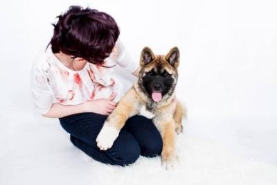 Americká akita s PP štěně - fenka